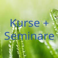 Kurse + Seminare